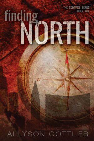 FN ebook cover