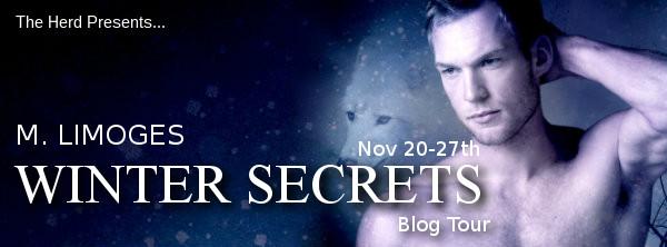 winter secrets banner
