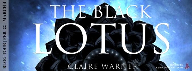 The black lotus tour banner (1)
