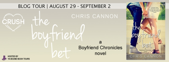 The Boyfriend Bet tour banner