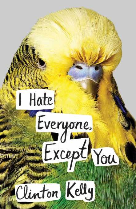 i-hate-everyone-except-you-9781476776934_hr